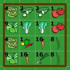 Square foot gardening plans - salad veggies