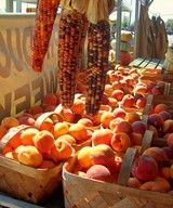 Brentwood Produce Stand - The Fun Times Guide to Brentwood, TN