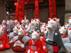 Many Inari in Kyoto