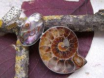 Ammonit Fossil & Muschel, Anhänger, Silber pl.