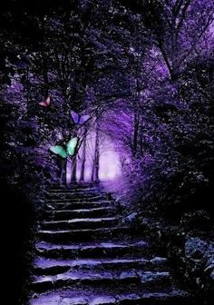 Ideas for fantasy landscape forests magic paths Purple Love, All Things Purple, Shades Of Purple, Deep Purple, Purple Stuff, Beautiful Places, Beautiful Pictures, Purple Aesthetic, Purple Reign