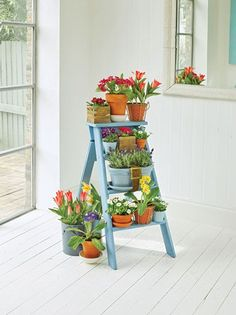 A repurposed ladder can be the base for a lovely indoor flower garden.