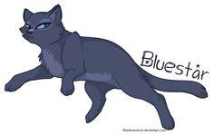 Warrior cat rants - Bluestar - Wattpad