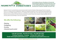Ngwenya Forestries :) Mpumulanga  WE OFFER Firefighting Planting Pruning and Chemical weed control  Cell: 083 254 6387 Tel: 079 272 7671 Fax: 086 582 3292 Email: info@ngwenyaforestries.co.za benjamin@ngwenyaforestry.co.za www.ngwenyaforestry.co.za Weed Control, Three Words, Firefighting, 20 Years, Planting, Plants, Fire Fighters, Weeding, Firemen