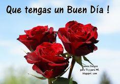 Que tengas un Buen Día !  (3 Rosas rojas)