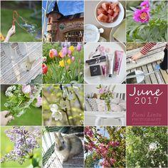 Kesäkuu / June 2017 June, Table Decorations, Home Decor, Decoration Home, Room Decor, Dinner Table Decorations, Interior Decorating