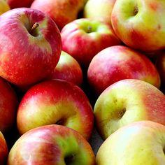 Omena-puolukkamarmeladi
