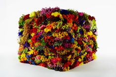 japanese artist azuma makoto has represented nine stages of decomposition using flowers and leaves.
