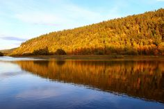 The River Lemmenjoki in Autumn - Inari – Wikipedia Places Around The World, Around The Worlds, Hiking Routes, Alien Worlds, Water Reflections, The Weather Channel, Closer To Nature, Boat Tours, Archipelago