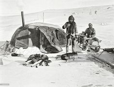 size: Giclee Print: Roald Engelbert Amundsen Expedition to the North Pole with Tent in Camp : Mountains Of Madness, North Pole, Gradient Color, Find Art, Framed Artwork, Alaska, Giclee Print, Tent, Around The Worlds