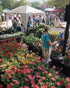 Winter Park, Florida Farmer's Market on Park Avenue