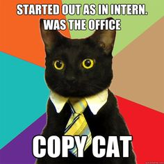 Business Cat worked his way up the corporate ladder.