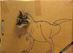 Chat en dinosaure