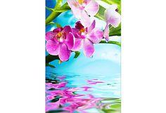 Fototapeta Orchidea nad vodou 6749 Painting, Jewelry, Art, Art Background, Jewlery, Bijoux, Painting Art, Jewerly, Paintings