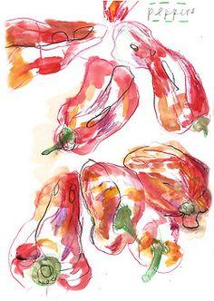 a little pepper sketch