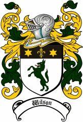 Wilson Coat of Arms / Irish Family Crest