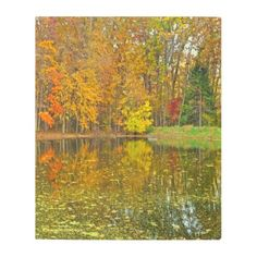 """AUTUMN REFLECTIONS"" METAL WALL ART - red gifts color style cyo diy personalize unique"