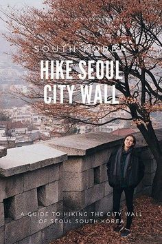 Hike Seoul City Wall - Day Activities in Seoul South Korea South Korea Fashion, South Korea Seoul, South Korea Travel, Asia Travel, Food Travel, Travel Stuff, Busan, Places To Travel, Places To See