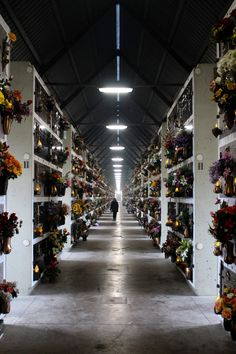 Aldo Rossi, Federico Puggioni · San Cataldo's cemetery in Modena