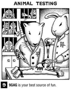 Stop Animal Testing, Stop Animal Cruelty, Meaningful Pictures, Purple Cow, Art Jokes, Vegan Humor, Animal Protection, Clean Memes, Parallel Universe