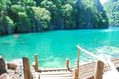 Malcapuya Island: Coron, Palawan  Can I dive from here?