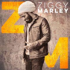 Depuis qu'il est né, Ziggy Marley baigne dans la musique. A l'âge de 10 ans, il assistait aux enregistrements de son célèbre papa, Bob. Maintenant, il a évidemment pris son envol avec pas moins de 8 albums, tous couronnés par des Grammy Awards. Son premier...
