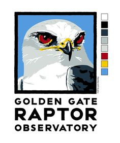 2016 Shirt design for Golden Golden Gate Raptor Observatory by Lynn Bantley