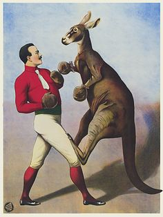 *BOXING KANGAROO ~ Vintage Sideshow Circus Poster, c.1891
