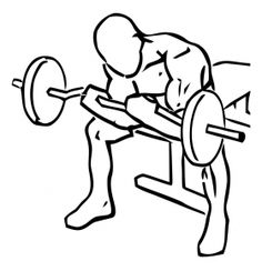 Seated Close Grip Concentration Curls with Barbell 2
