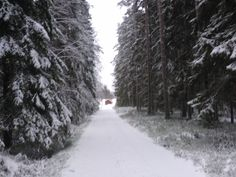 Winter.. Finland, Winter, Outdoor, Winter Time, Outdoors, Outdoor Games, The Great Outdoors, Winter Fashion