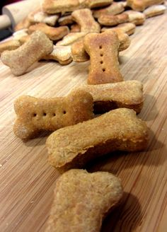Pumpkin Puppy Cookies keep your dog's coat healthy and are great for pups with sensitive tummies. Quick, easy recipe to make your dog roll over with joy!