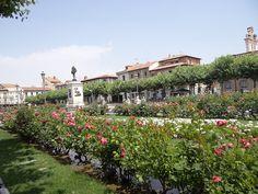 Consulta el tiempo en Alcalá de Henares - http://www.dream-alcala.com/el-tiempo-en-alcala-de-henares/