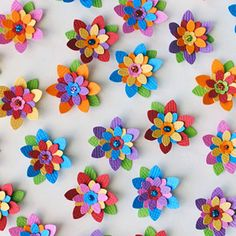 Flowers for a Fiesta