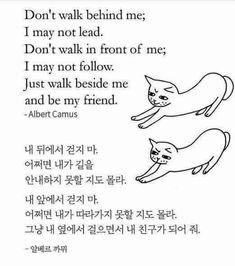 Korean Words Learning, Korean Language Learning, Learn Korean Alphabet, Korea Quotes, Learn Hangul, Korean Writing, Korean Phrases, Korean Lessons, Aesthetic Words