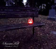 365 Project---Day 311: Cemetery Jack on a bench!