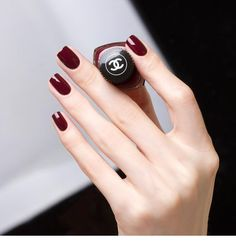 Related posts:Black Tipped French Manicure DesignBeautiful color and straight edge nailsAmazing ring and white medium nails - . Red Stiletto Nails, Red Acrylic Nails, Dark Nails, Dark Color Nails, Burgundy Nail Polish, Dark Nail Polish, Wine Nails, Chanel Nails, Chanel Nail Polish