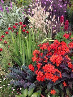 Great Dixter Pot Display, Mon 17th June 2014 Garden Paths, Garden Landscaping, Cut Flower Garden, Chelsea Flower Show, Small Gardens, Dream Garden, Horticulture, Trees To Plant, Garden Inspiration