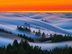 Rolling Images of San Franciscos Fog Against Neon Skies Shot by Nick Steinberg