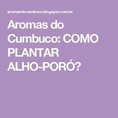 Aromas do Cumbuco: COMO PLANTAR ALHO-PORÓ?