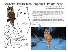 "Long-eared Owls are fairly common, but not often seen. He's a good project for a snowy winter's day. Right click here and select ""Save target as"" to save this PDF pattern to…"