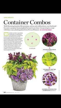Container gardening is a fun way to add to the visual attraction of your home. You can use the terrific suggestions given here to start improving your garden or begin a new one today. Your garden is certain to bring you great satisfac Garden Yard Ideas, Lawn And Garden, Garden Pots, Fish Garden, Box Garden, Outdoor Plants, Outdoor Gardens, Potted Plants Patio, Plants In Pots