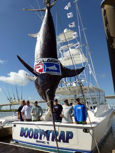 The Booby Trap Fishing Team and their new Texas State Record Swordfish!