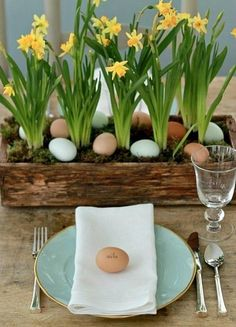 Simple, but beautiful center piece, made by placing small pots of daffodils in a rustic wooden box and covering it with moss. Use eggs as place cards!