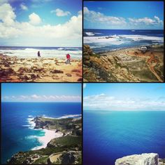 Everyone will tell you, on a trip to Cape Point you can expect to see baboons. But sometimes Cape Town throws you a curve ball. Table Mountain, Baboon, Cape Town, Best Hotels, Westerns, Natural Beauty, Africa, History, City