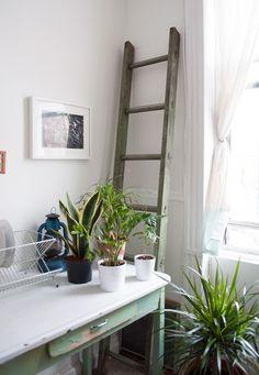 Old School Charm In A Brooklyn Railroad Apartment – Design*Sponge Decor Interior Design, Interior Styling, Interior Decorating, Railroad Apartment, Brooklyn Apartment, York Apartment, Apartment Design, Ladder Decor, New Homes