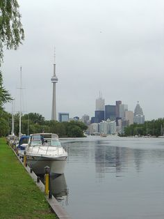View of Toronto at Hanlan's Point, Toronto Islands Oh The Places You'll Go, Places To Travel, Places To Visit, Around The World In 80 Days, Around The Worlds, Amazing Places, Beautiful Places, Toronto Island, Toronto Skyline