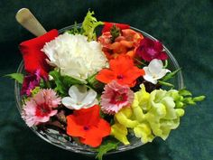 Not Just Pretty: How to Use Edible Flowers in Food: Edible Flowers for Recipes.  Cooking with flowers.  Yes, those flowers look beautiful as garnishes, but what do they taste like?  Edible flowers as a garnish make any dish look special on your table, but be sure the flavor of the flower compliments the dish. Here are a few ideas to beautify your recipes and perk up your taste buds!
