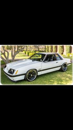 Ford Svt, Ford Mustang Shelby Gt500, Mustang Cars, Mustang Rocket, Fox Body Mustang, Notchback Mustang, Mercury Capri, Wild Mustangs, Iphone Photography