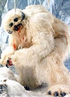 Wampa ice creatures were carnivorous predatory reptomammals indigenous to the remote Outer Rim Territories ice planet Hoth. The bipedal beasts stood over two meters in height.
