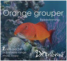orange grouper by :: 2Xtreme ::